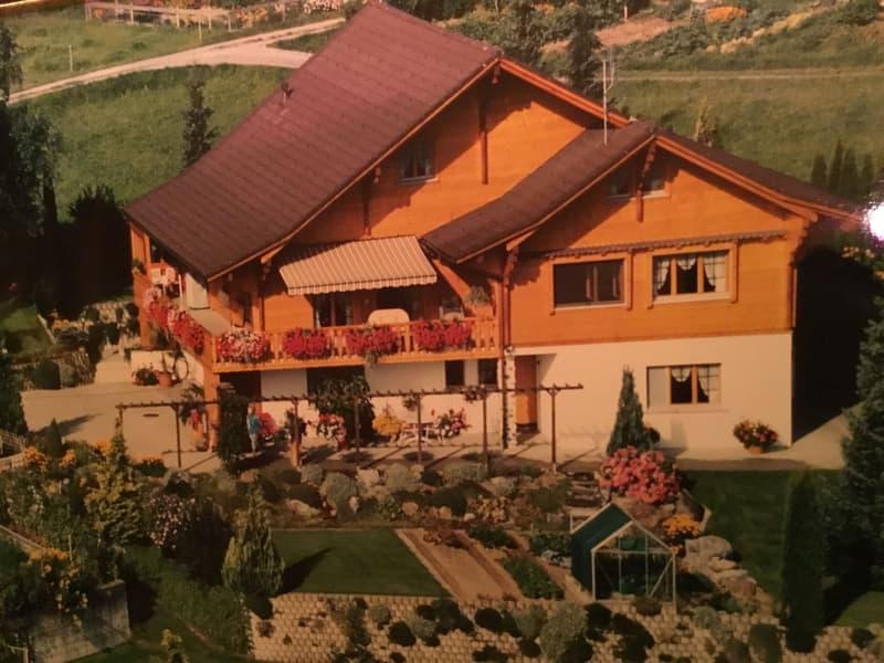 Einfamilienhaus / Chalet mit Aussicht (1)