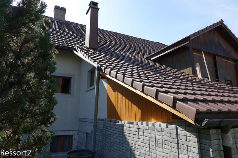 Toiture/côté nord / Dach/Nordseite