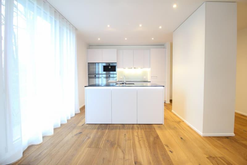 Top ausgebaute Wohnung in Nähe vom Lido Luzern