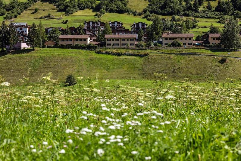 Schöne Wohnüberbauung im Bündnerland - VEIA CANTUNALA 133A1-133E1, 7453 TINIZONG (1)
