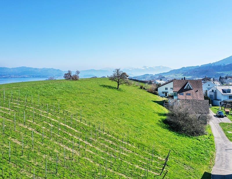 Grundstück - 8832 Wollerau