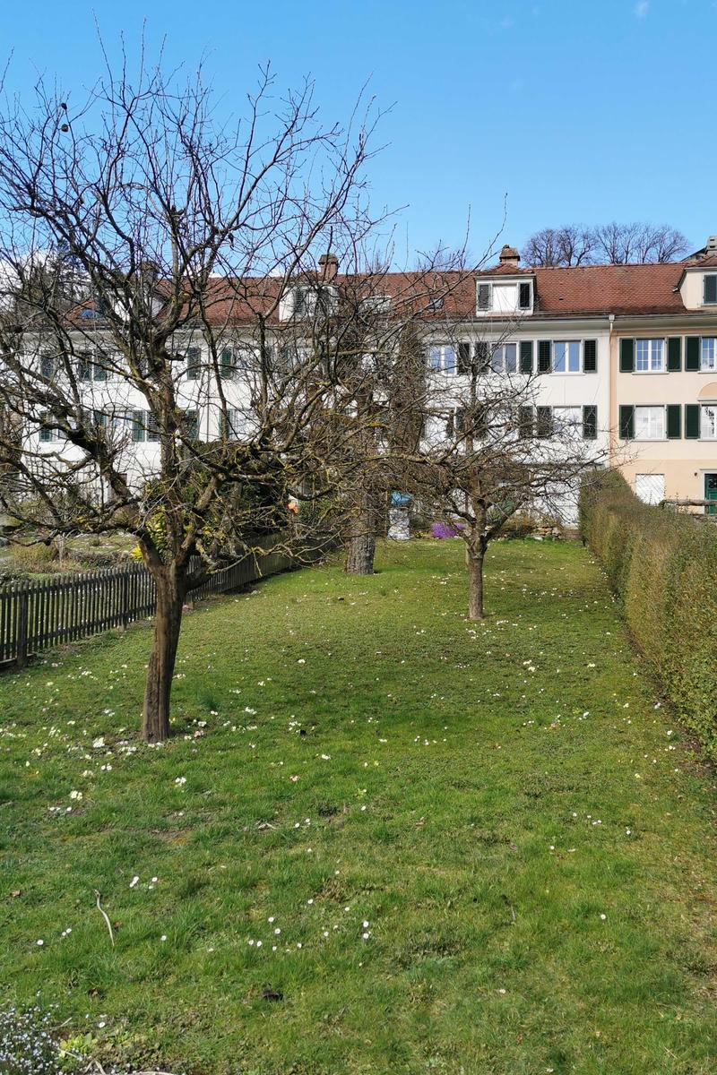 Weinbergstrasse 45, 8400 Winterthur, familienfreundlich, zentrumsnah und doch ruhig (3)