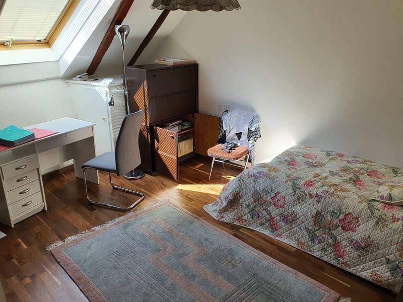 Magnifique attique à Gilly, belle vue, grand balcon et très calme (4)
