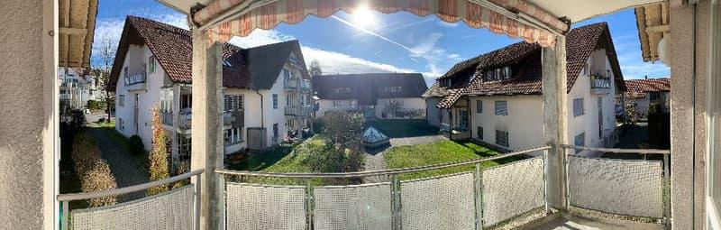 Sehr gepflegte 3.5 Zimmer Eigentumswohnung mit Balkon und Garagenplatz in attraktiver Umgebung (4)