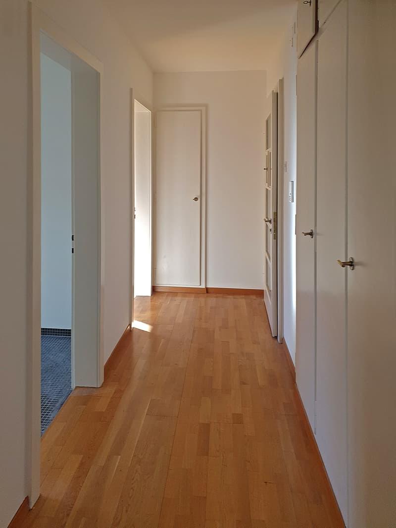 3 1/2 Zimmer-Wohnung (3)