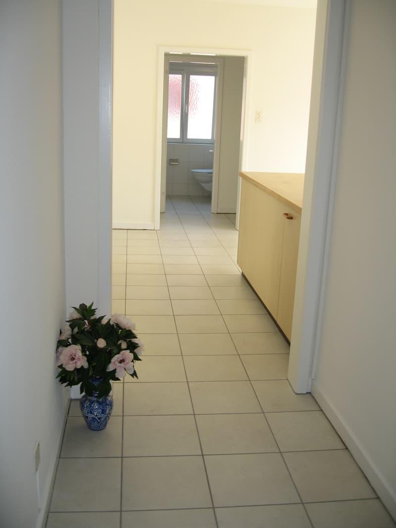 Grosse 3½ Zimmer-Wohnung mit Blick ins Grüne zentral in Pratteln (3)