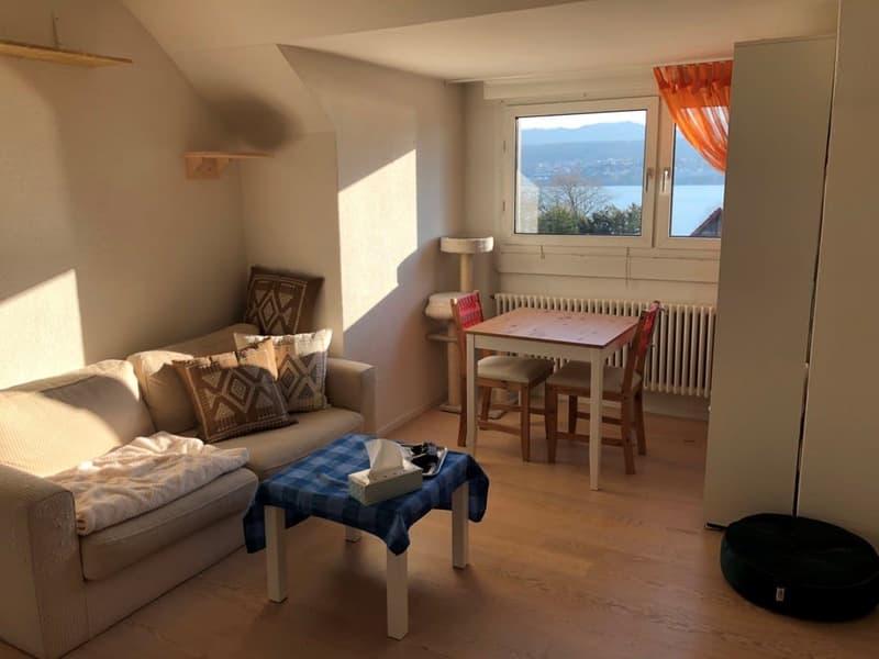 Besondere und nach modernem Standard ausgebaute 2- Zimmerwohnung