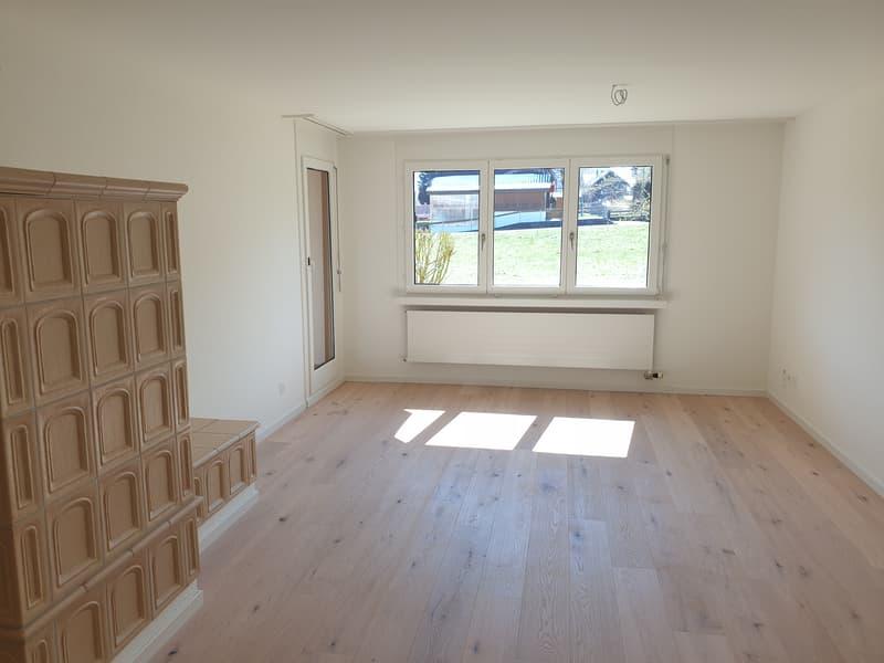 Renovierte Wohnung mit eigenem Waschturm und Kachelofen (2)