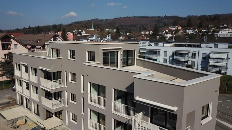 Attikawohnung mit Weitsicht und grosser Terrasse (3)