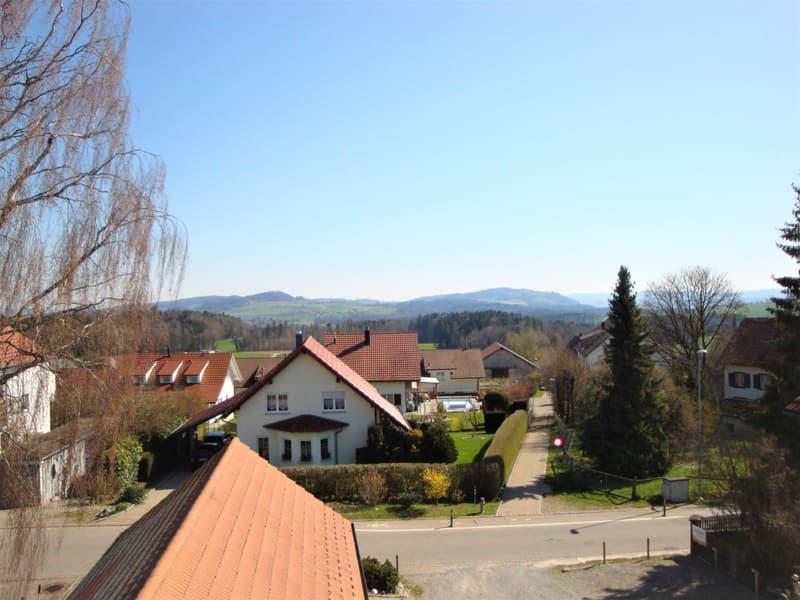 2.5-Zi.-Dachwohnung_Oberwilerstrasse_7_Gerlikon-Frauenfeld