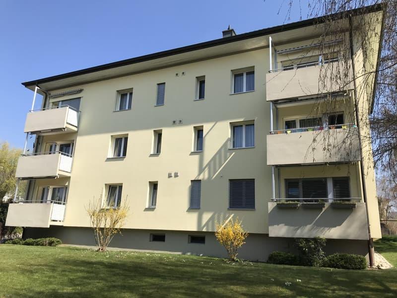 Mehrfamilienhaus Mühlackerstrasse 11, Fahrwnagen