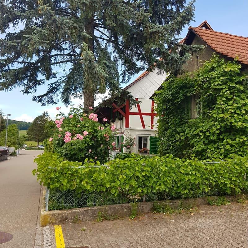 Charaktervolles Bauernhaus mit Stöckli, Liebhaberobjekt (2)