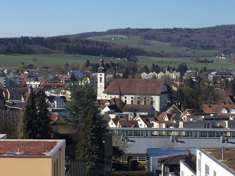 Attika-Maisonette-Terrassenwohnung an fantastischer Aussichtslage! (4)