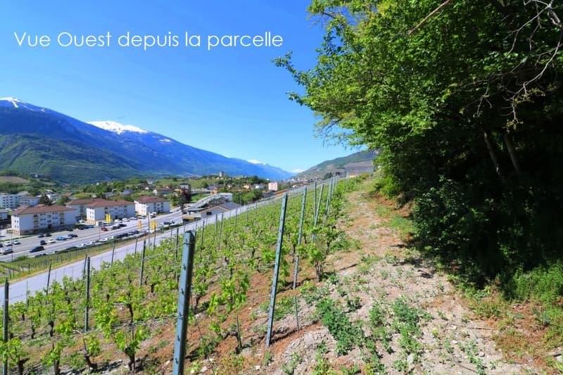 Sierre - belle parcelle à bâtir en zone villa - CHF 390.- / m2 (1)