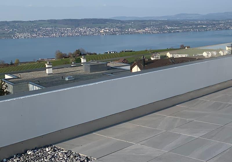 Terrassenwohnung mit herrlicher Panoramaseesicht (1)