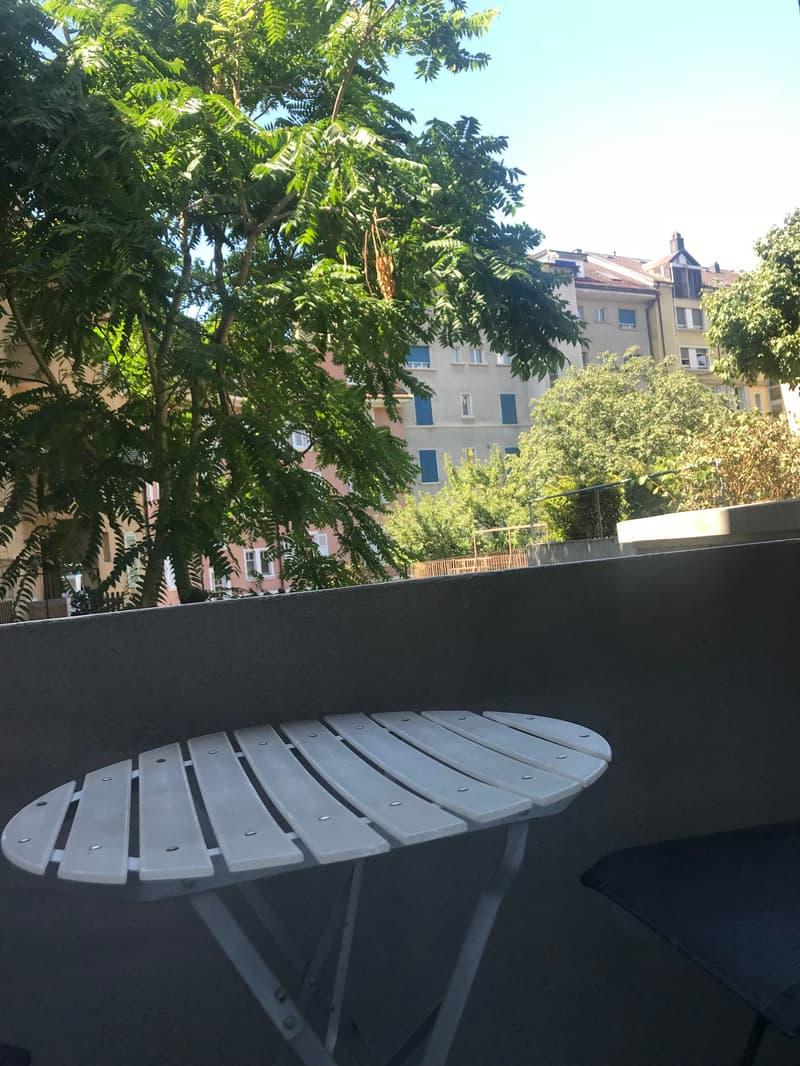 Appartement Meublé De 1,5 Pièces - Lausanne