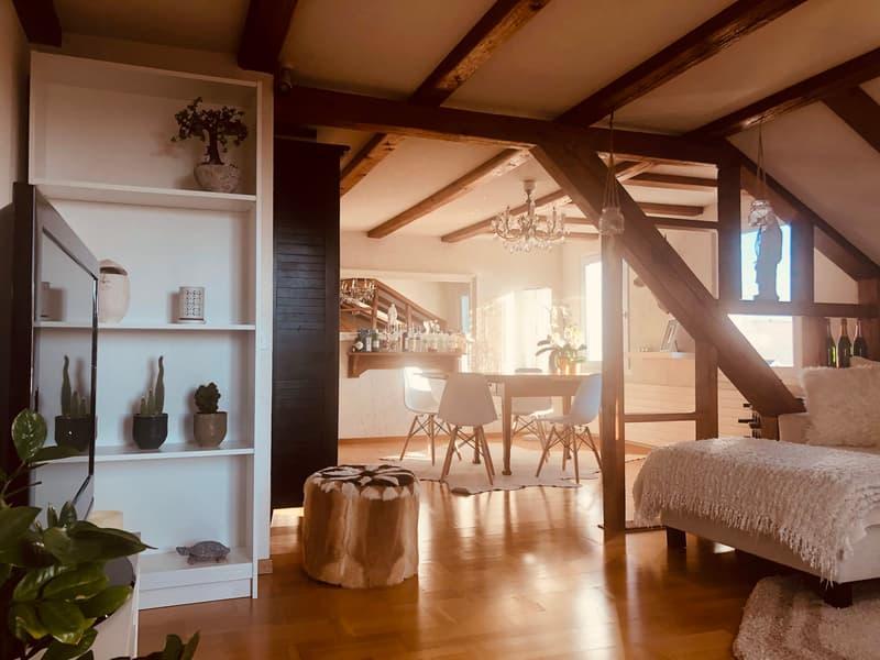 Sehr schöne Altbau Dachwohnung mit Seesicht