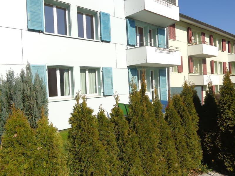 4 Zi-Wohnung an ruhiger, sonniger Lage (1)