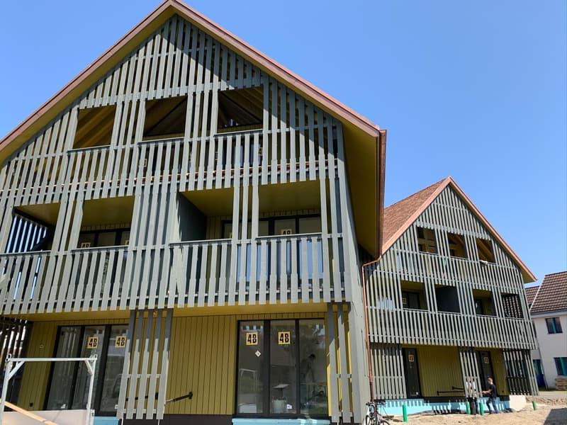 Neue schöne 3.5 Zimmer Wohnung in Kleinandelfingen (2)