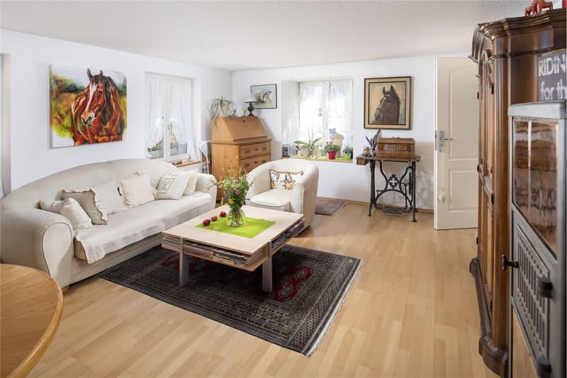 Wohnzimmer Rainstrasse 6