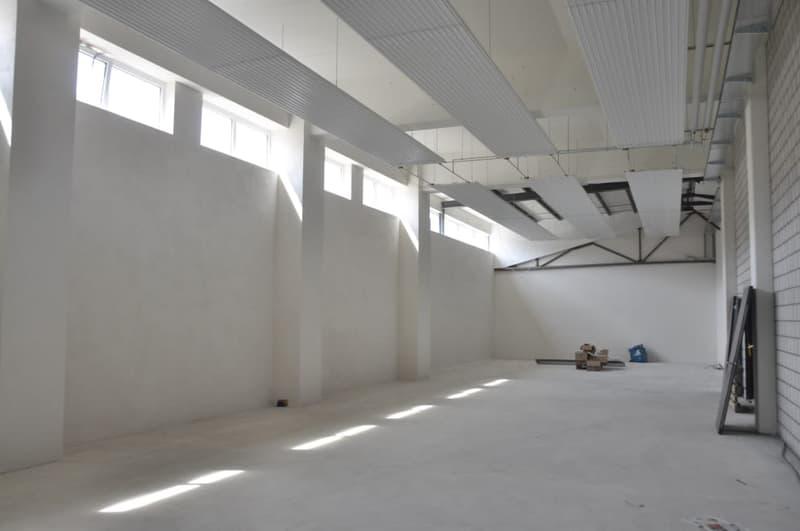 Helle Halle mit ca. 250m2, Raumhöhe ca. 6m. Optional: Bürogeschoss als OG (siehe Bild12).