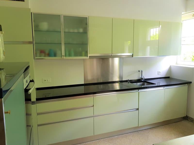 Cucina normale e industriale