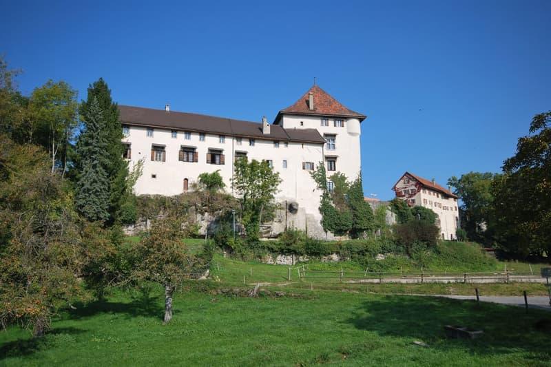 Le château dans son environnement verdoyant