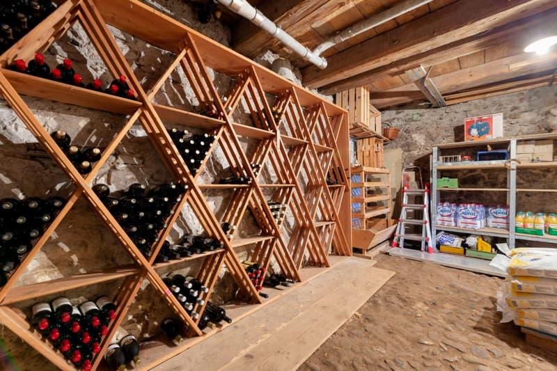 Natur-Wein-Keller  der keine Wünsche offen lässt