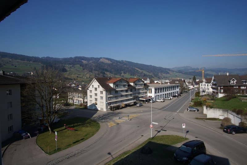 Aussicht nach Südwest. Richtung Ricken, Wattwil.