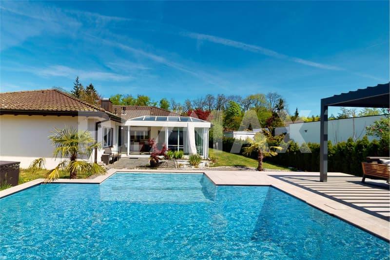 Einladender Pool mit Blick auf den Palmen-/Steingarten und zum Landhaus