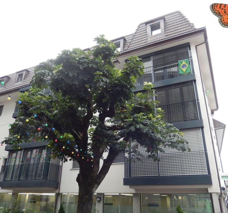 Rue de Gruyères 33
