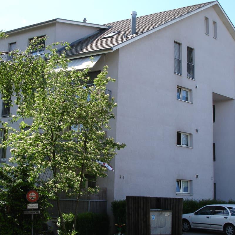 Linth-Escher-Weg 2