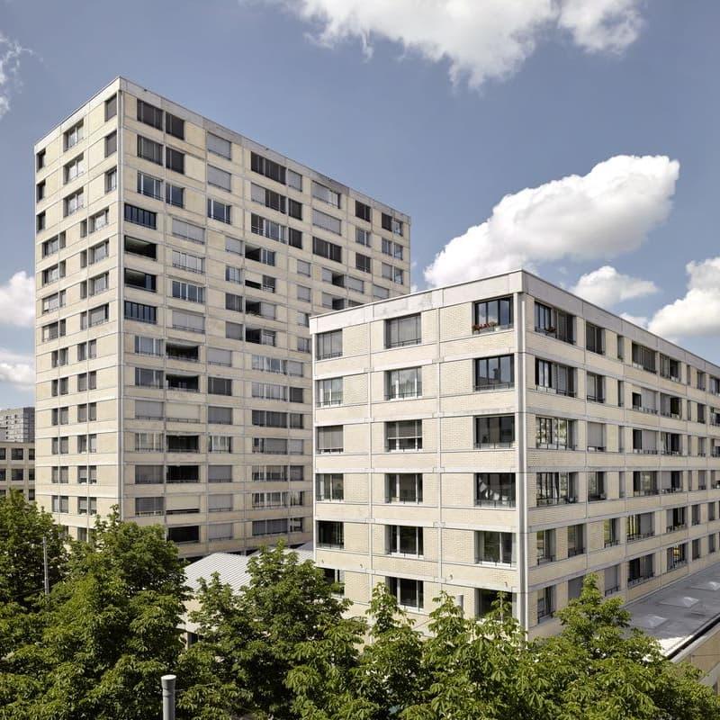 Hohlstrasse 482