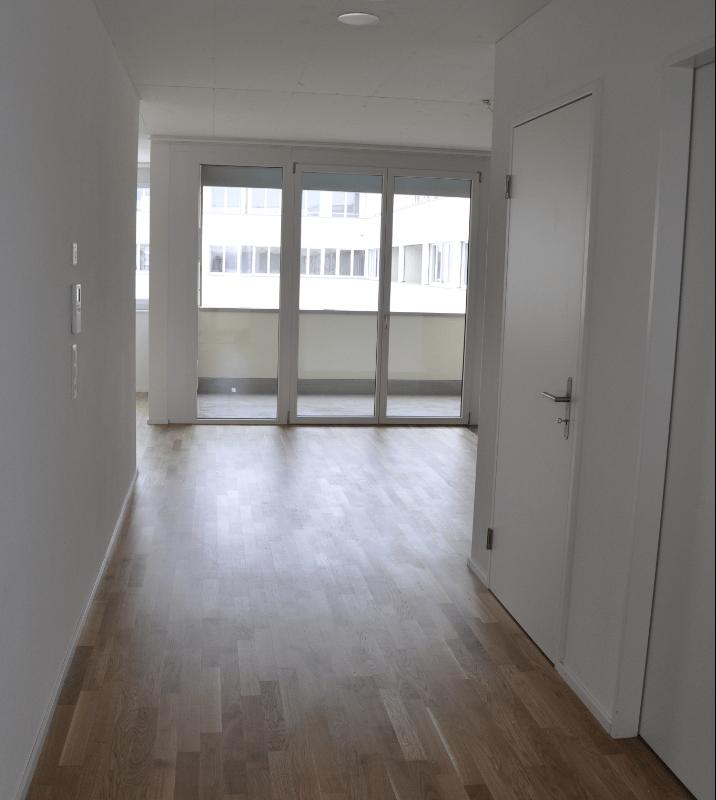 Hohlstrasse 465