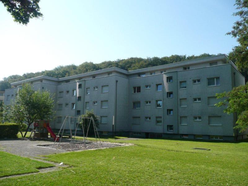 Buholzweg 6