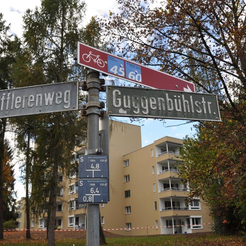 Guggenbühlstrass 117