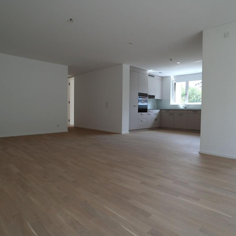 Birmensdorferstrasse 458