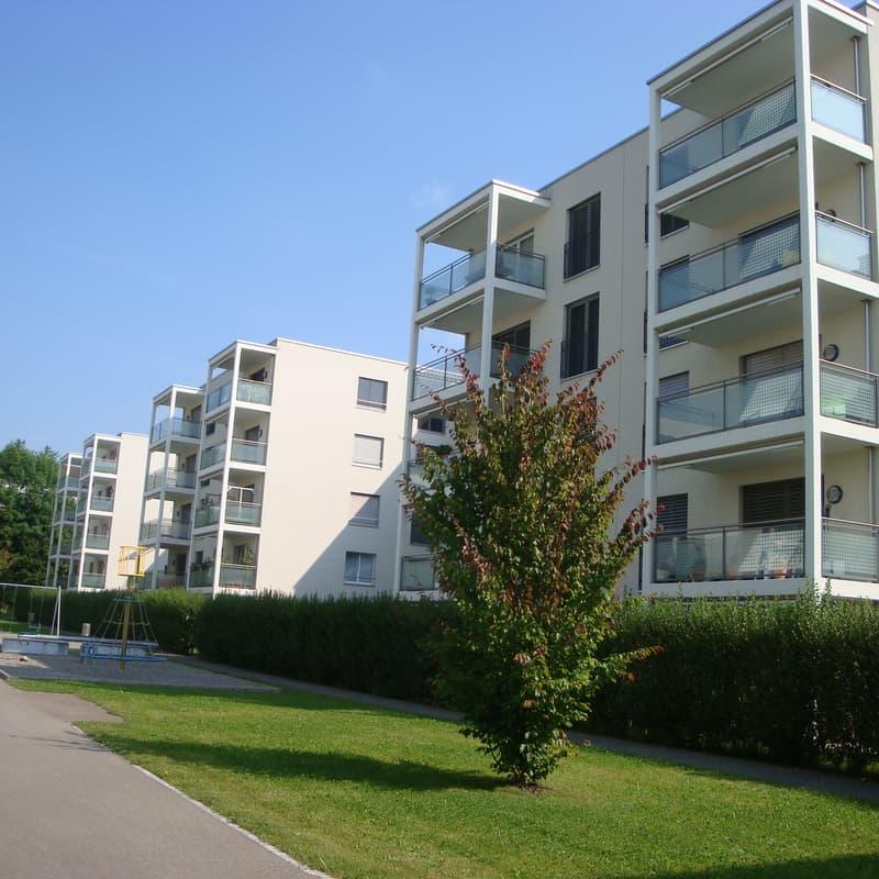 Rothenpark 8