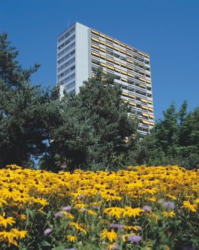Waldmannstrasse 31