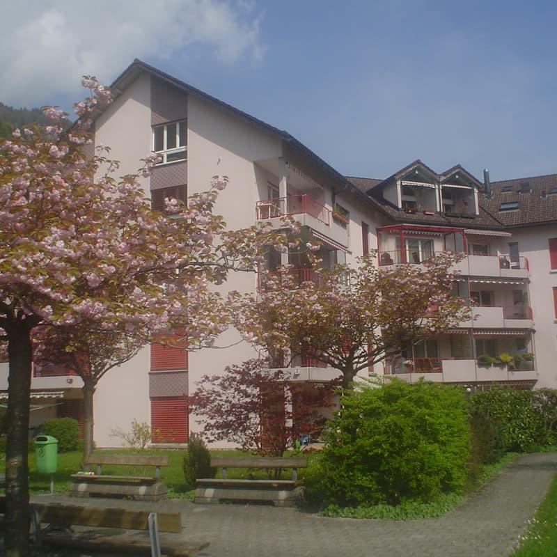 Kärpfstrasse 39b