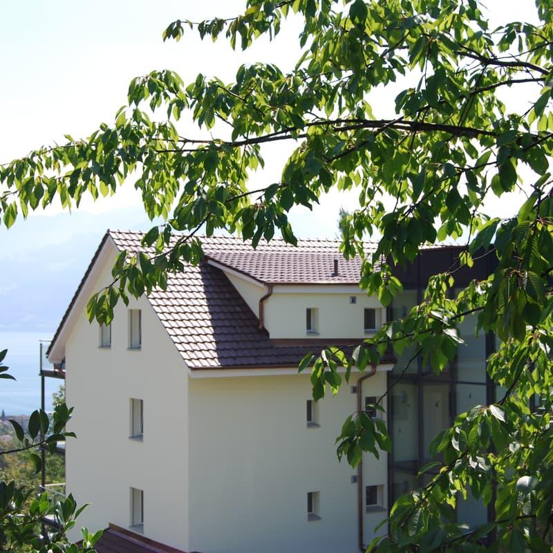 Rigiblickstrasse 55