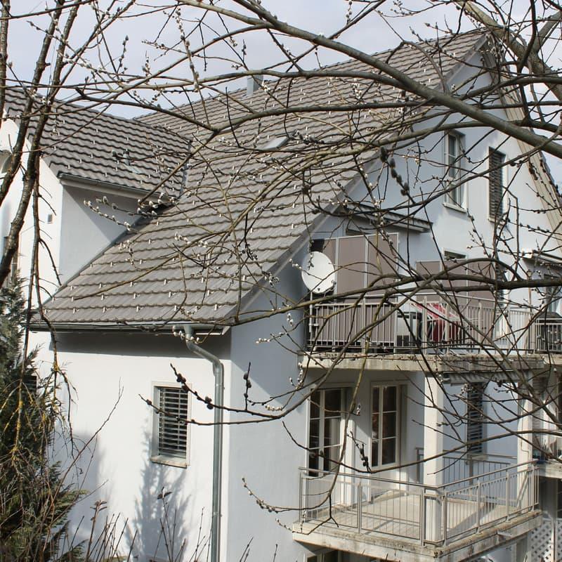 Steinwiesliweg 18