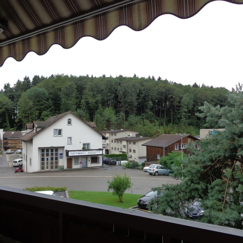 Bühlwiesenstrasse 8