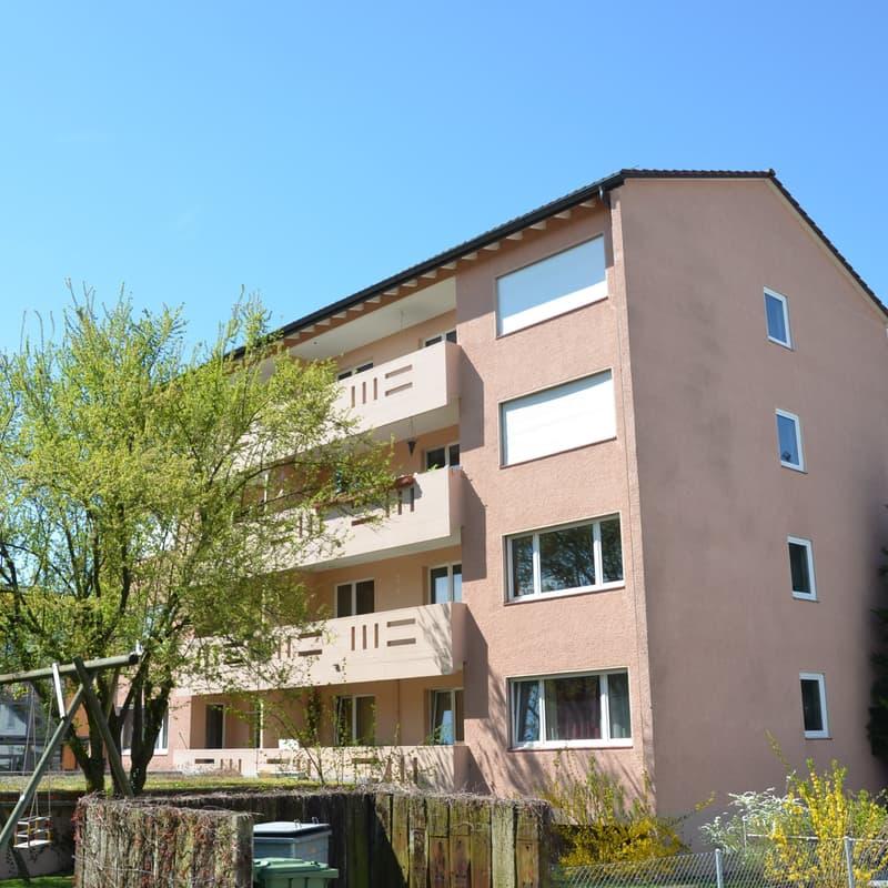 Wiesengrundstrasse 29