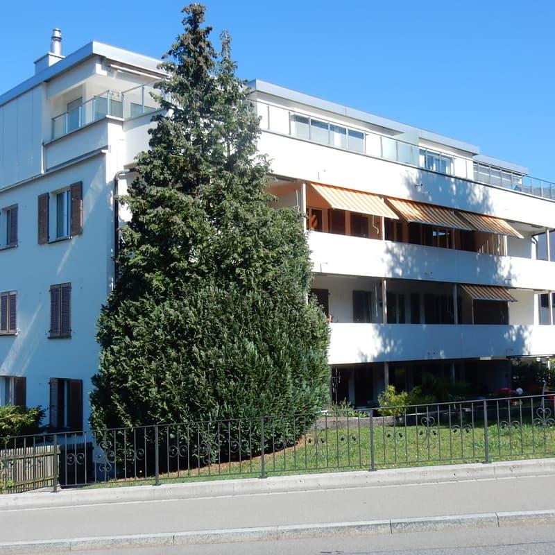 Hintere Etzelstrasse 10