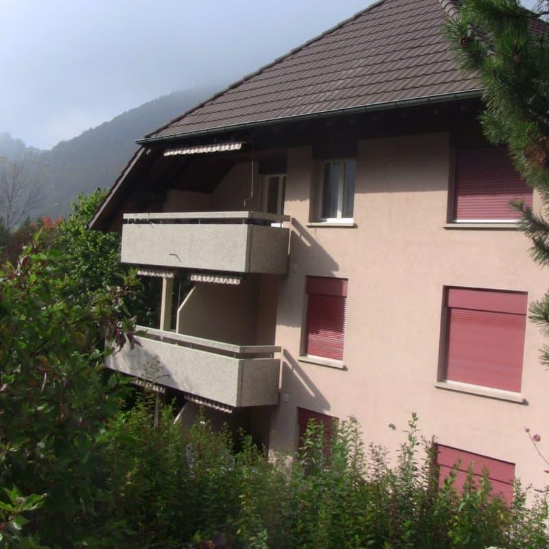 Mühlefeldstrasse 268