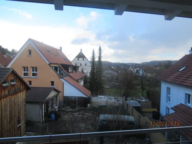 Seewenstrasse 13