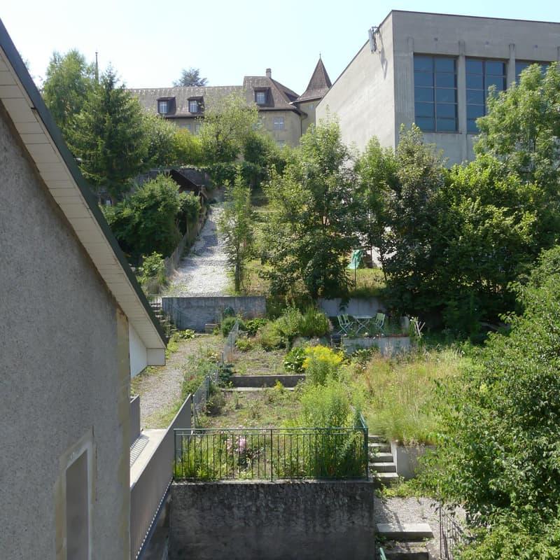 Rue Pierre-Aeby 33