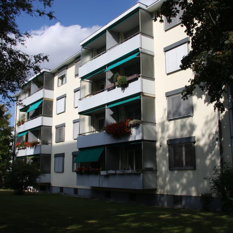 Birkenstrasse 6