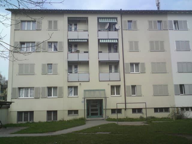 Roswiesenstrasse 149